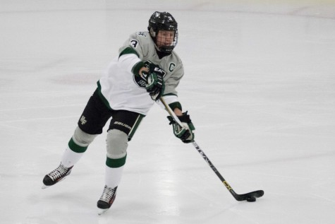 Hockey teams look to build on last season's success