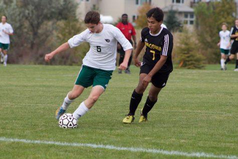 Girls defeat Big Lake, boys fall to Waconia in section tournament