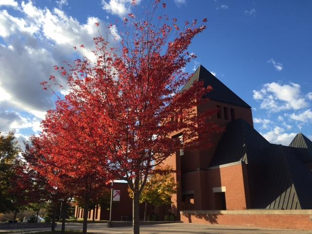 Fall Colors up in Collegeville
