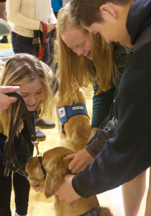 Students pet an in-training service dog at convocation.