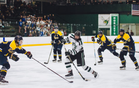 Slideshow: Hockey vs. Prior Lake