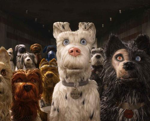 Isle of Dogs is Pawsome