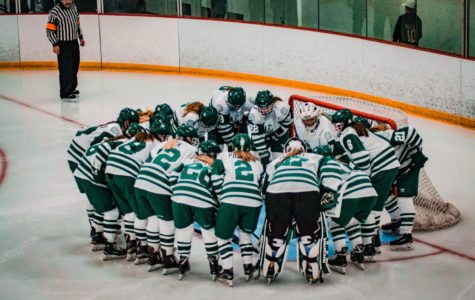 2019-20 Girls Hockey Preview