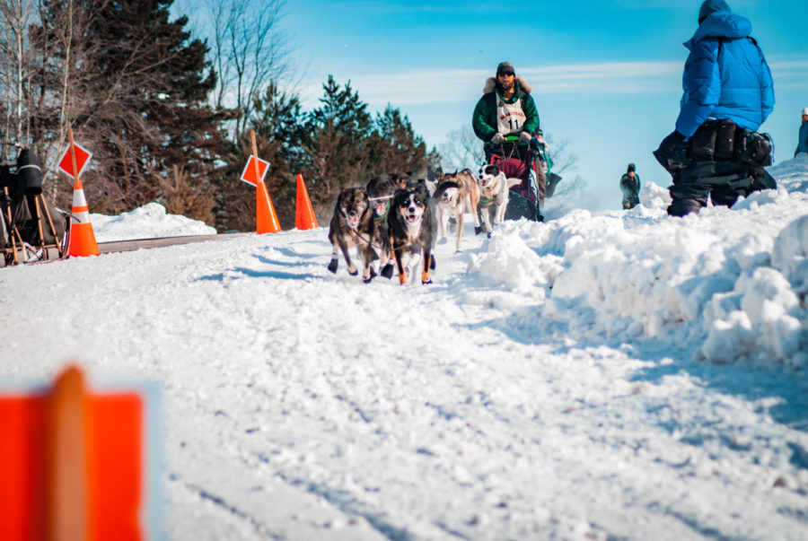 CNP_BEARGREASE_2019_28