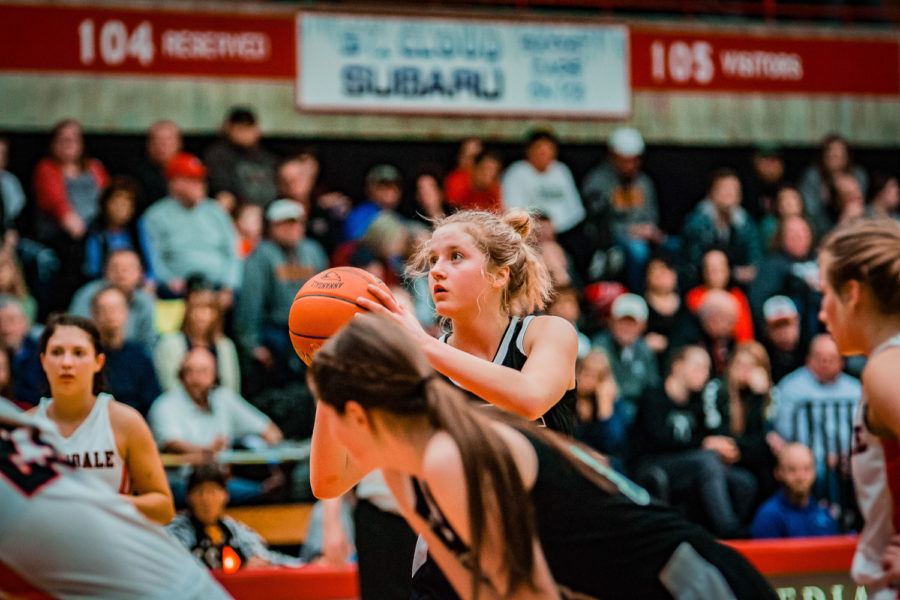 Holy Family Girls Basketball Section Final vs. Annandale Mar 8, 2019: Grace Elander '20 (12)