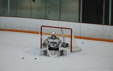 The Girl Who Played Goalie