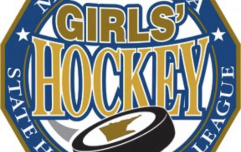 Girls Hockey Section and State Preview