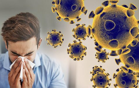 Information on the Coronavirus and how to Stay Safe