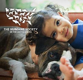 The Truth About Pet Adoption