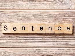 One Sentence, Go!